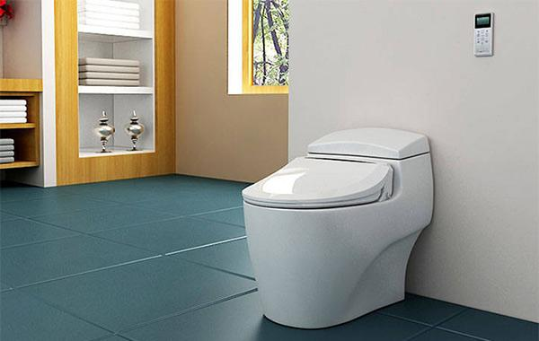 Prime What Is A Bidet Toilet And How Does It Work Wm Magazine Ibusinesslaw Wood Chair Design Ideas Ibusinesslaworg